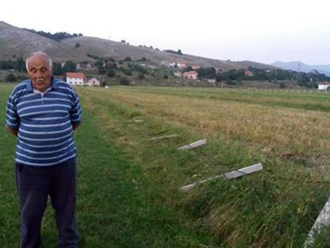 Rako Zelenović, Avtovci